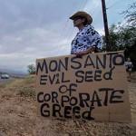 Green Greed - Seeds of Injustice, By Vandana Shiva