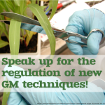 Speak up for the regulation of new GM techniques!