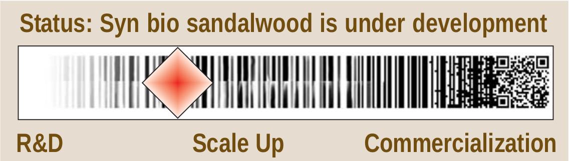 Sandalwood - SynBioWatch