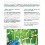 "New ""GM 2.0"" fact sheet explains the basics on gene-editing and Plant Breeding Techniques"