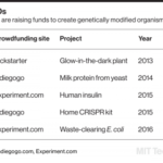 Why Kickstarter's Glowing Plant Left Backers in the Dark